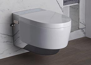 dusch wc hygienisch wie ein bidet angenehm bei h morrhoiden. Black Bedroom Furniture Sets. Home Design Ideas