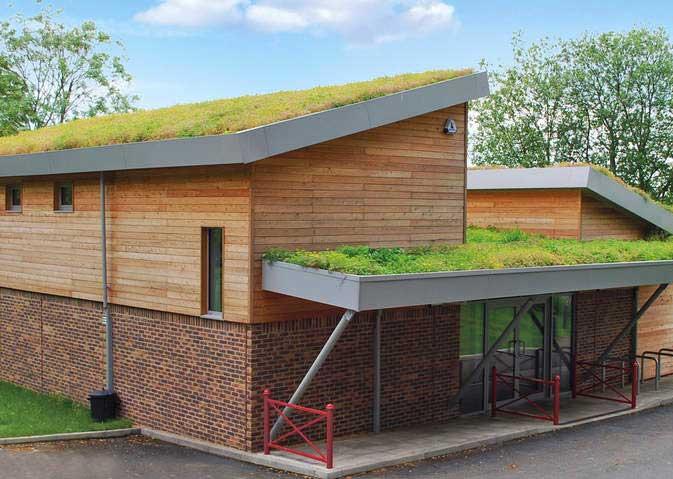 gr ndach ein rasen auf dem dach. Black Bedroom Furniture Sets. Home Design Ideas